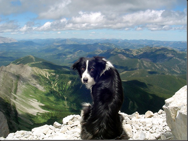 Summit of Crowsnest Mountain, Crowsnest Pass, Alberta